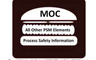Understanding the Interrelationships Between the PSM Elements For Effective Implementation | Process Improvement Institute